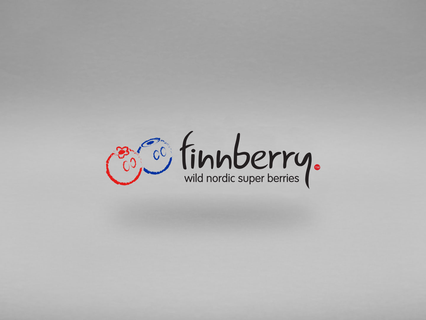 finnberry, nordic super berries, grafika, bakewell, derbyshire, branding, logo, stationery, graphic design, agency, peak district, sheffield, chesterfield, manchester, derby
